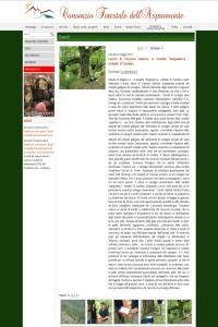 Consorzio Forestale Aspromonte